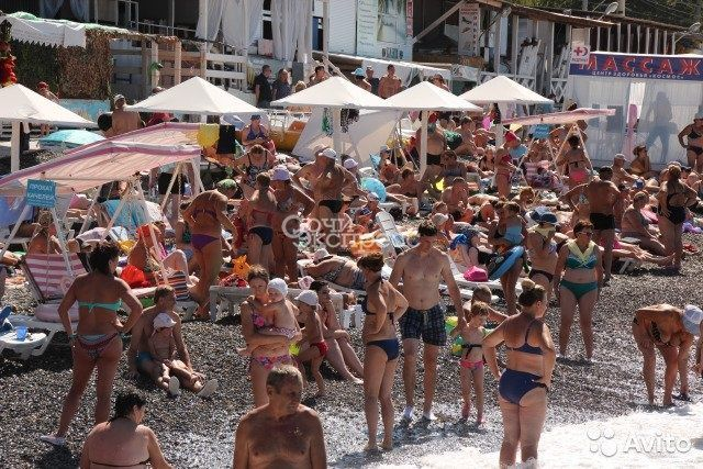 Готовый бизнес-точки на пляже в Адлере, 2019 г