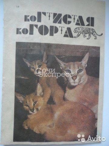 Рассказы о видах кошачьих Когтистая когорта 1992 г